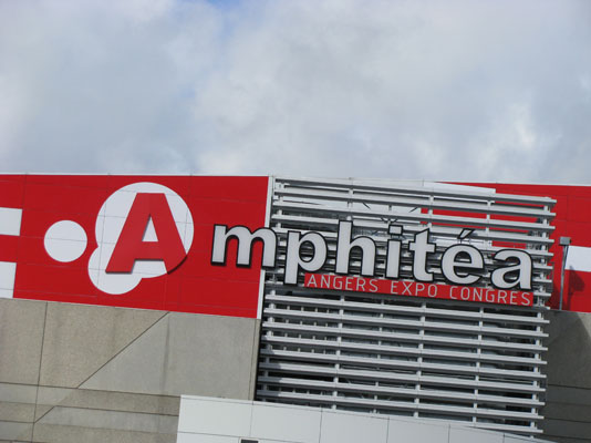 amphitea